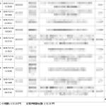 12月24日の成果報告!